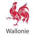 logo-coq-wallon-icon